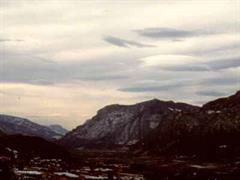 Föhn richtet in der ganzen Schweiz grosse Schäden an.